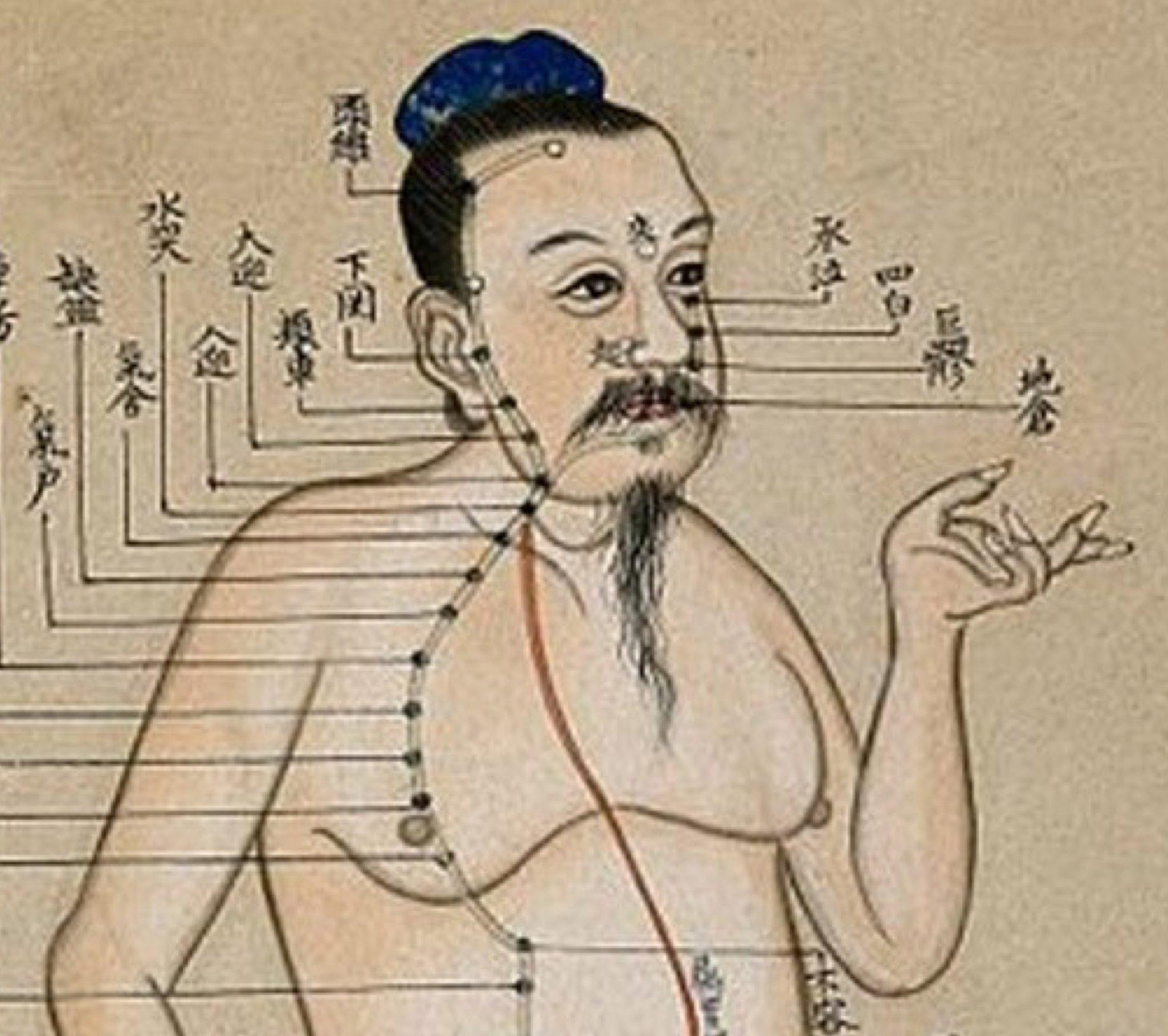 Medicina tradizionale Cinese Modena