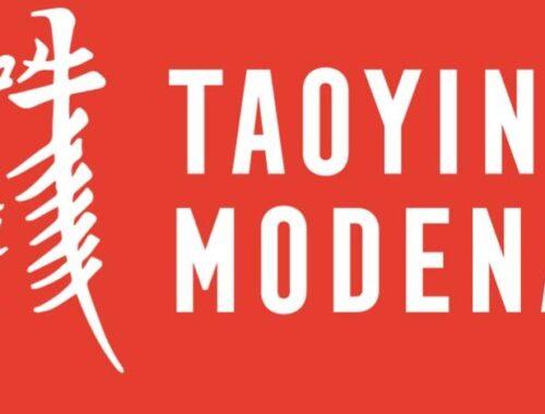Canale You Tube Tao Yin Modena